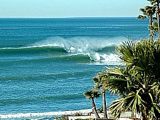 las gaviotas surf